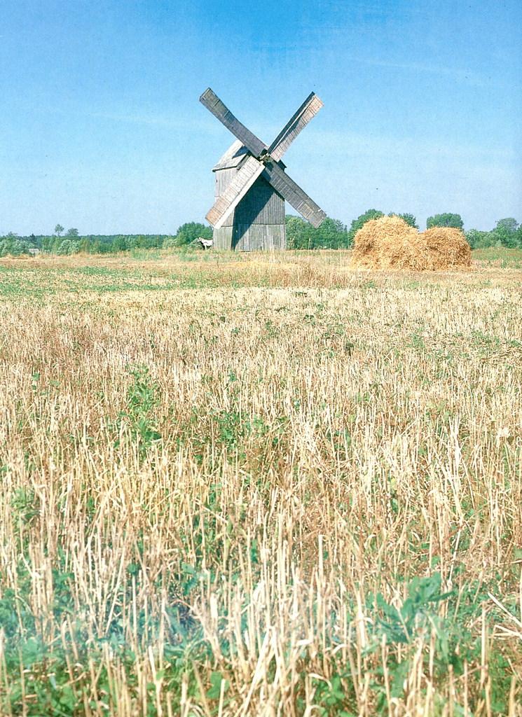 Zakharovtsy, windmill pic.